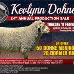 KEVLYNN DOHNE 24TH ANNUAL PRODUCTION SALE